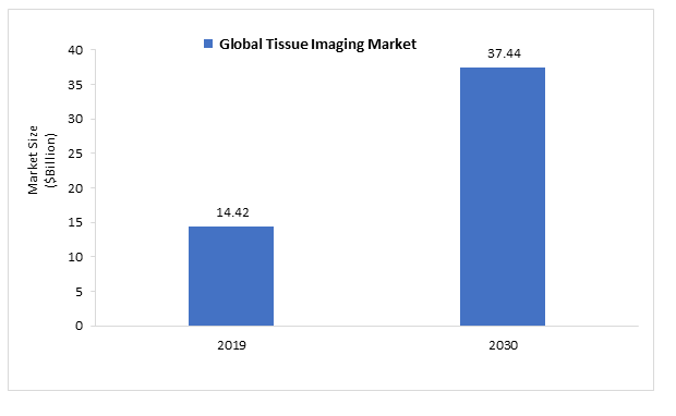Global Tissue Imaging Market