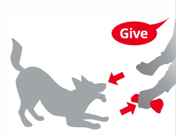 Teaching give