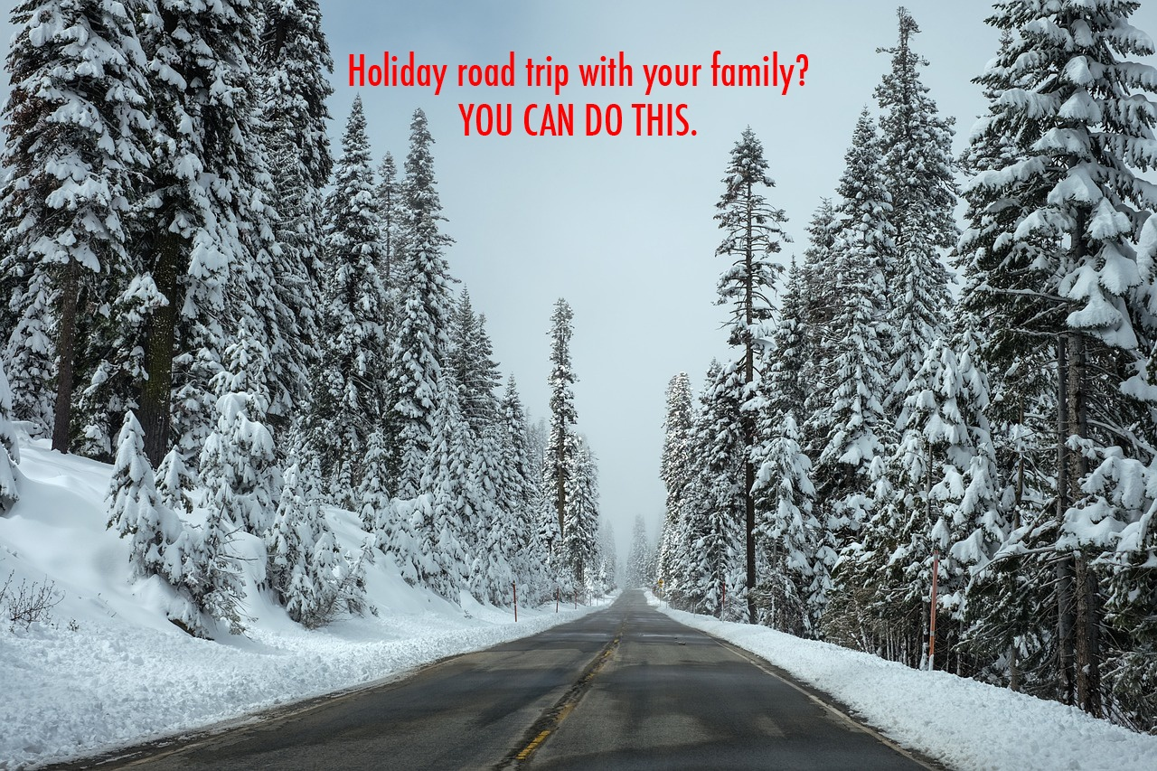 How to have a safe and fun holiday road trip with your family