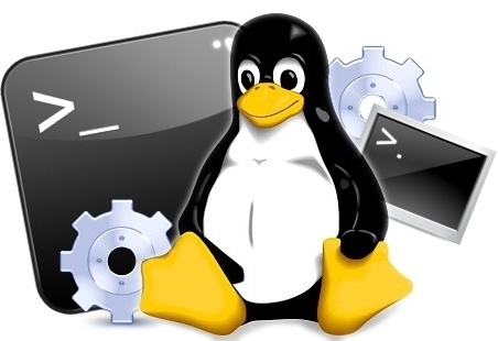 Basic Linux Commands and Linux Consulting Services