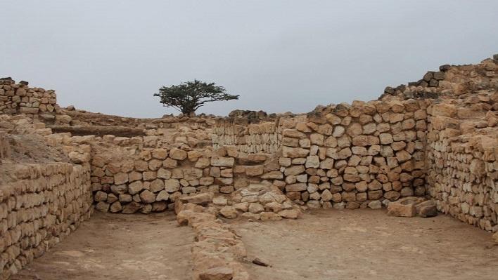 650 Oman-Edward-Young4-1.jpg