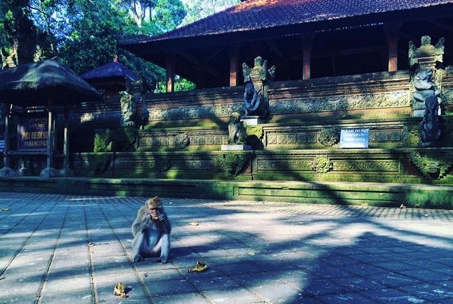Weekend Trips from Singapore  - Indonesia