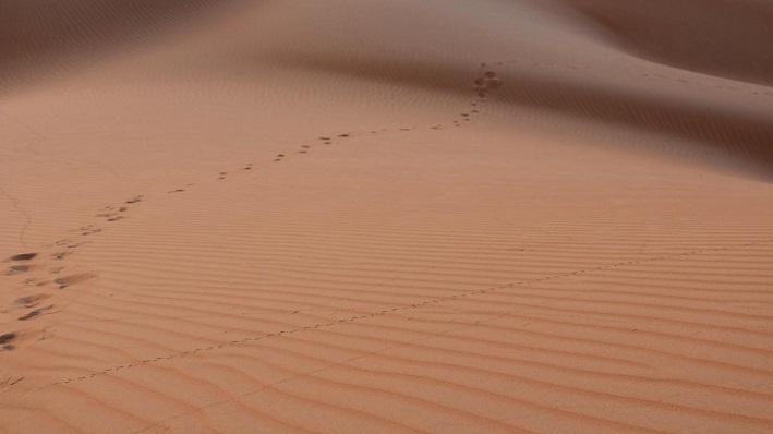 Oman-Edward-Young9-1.jpg