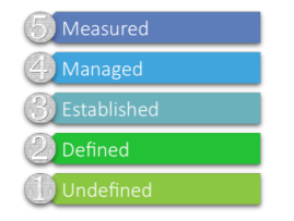5 Levels of Grant Management Maturity