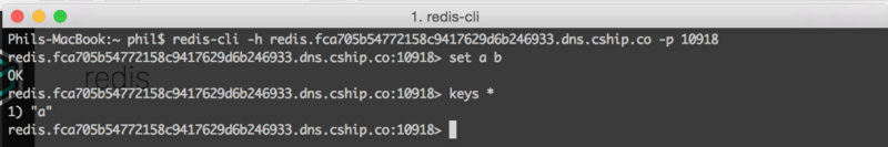 Connecting to redis using the DNS entry and discovery port