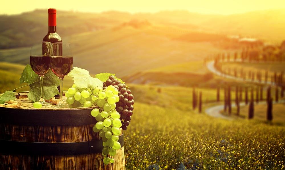 La fantástica industria vinícola en Italia.jpg