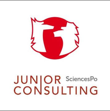 Junior consulting-1
