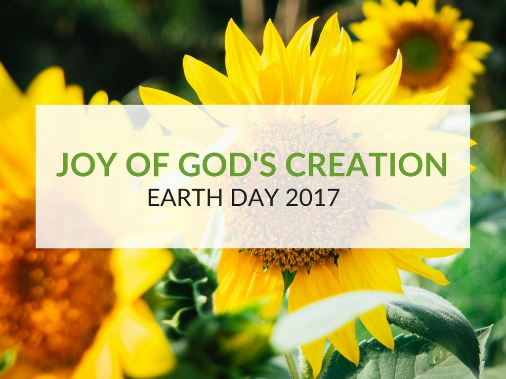 earth day and the joy of god u0027s creation